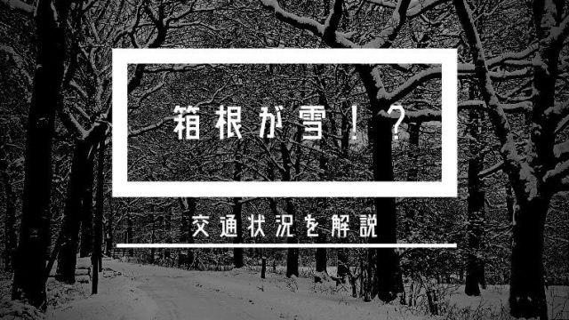 箱根の天気が雪の時は交通状況はどうなる