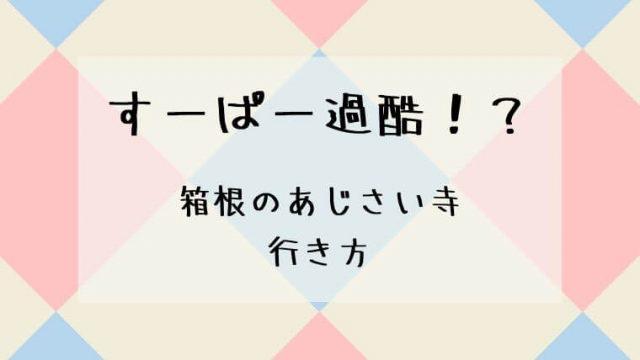 箱根のあじさい寺(阿弥陀寺)への行き方