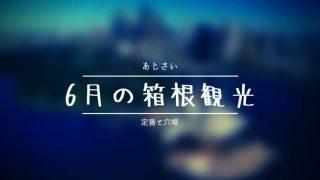 6月の箱根観光はあじさいのおすすめ