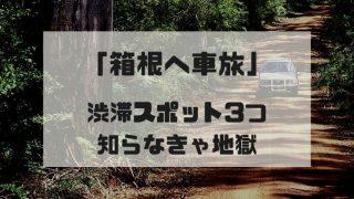 箱根への車旅行で渋滞回避方法